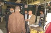 اللجنة الفنية للسلامة والصحة المهنية في المحافظة الوسطى تنفذ عدة جولات تفتيشية